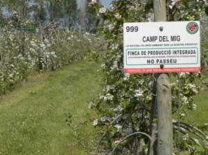 09 Protecció Vegetal