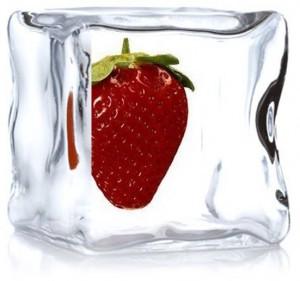 fruita congelada